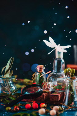 Dina Belenko DRAGONFLY ON BOTTLES NEAR MAGNIFYING GLASS Miscellaneous Objects