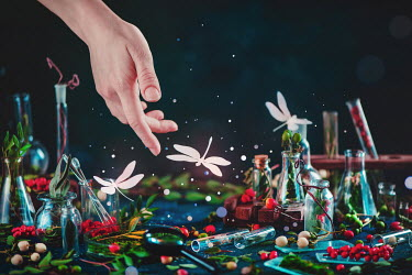 Dina Belenko WOMANS HAND BY DRAGONFLIES AND GLASS BOTTLES Body Detail