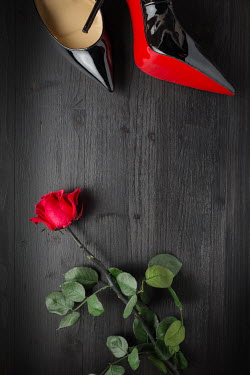 Paolo Martinez ROSE AND STILETTO SHOES ON BLACK WOOD Miscellaneous Objects