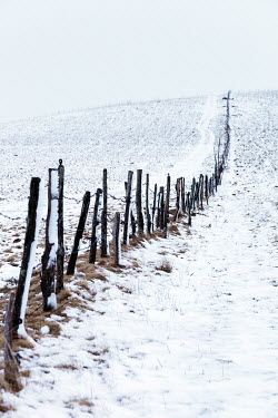 Ebru Sidar FENCE POSTS ON SNOWY COUNTRY HILL Snow/ Ice