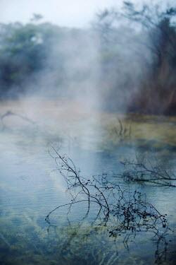 Sarah Louise Johnson MISTY COUNTRYSIDE LAKE Lakes/Rivers