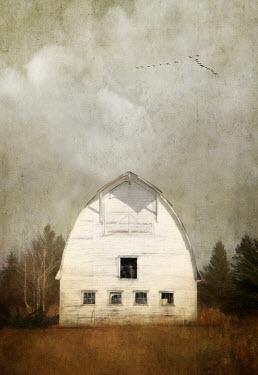 Jamie Heiden WHITE WOODEN BARN WITH TREES Houses
