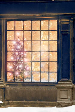 Lee Avison christmas tree in a vintage shop window Miscellaneous Buildings