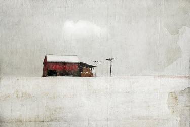 Jamie Heiden RED FARMYARD BARN IN SNOWY FIELD Miscellaneous Buildings