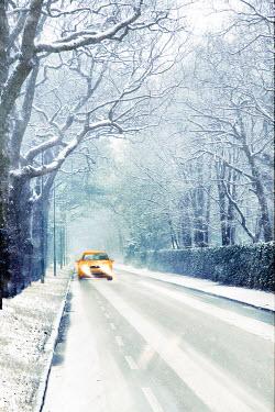 Yolande de Kort CAR DRIVING ON SNOWY COUNTRY ROAD Cars