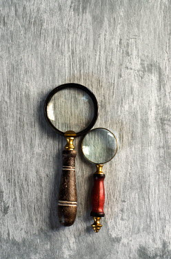 Cristina Mitchell TWO ANTIQUE MAGNIFYING GLASSES Miscellaneous Objects