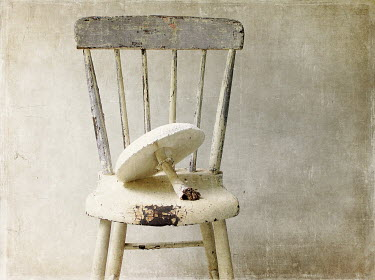 Pamela Schmieder LARGE WHITE MUSHROOM ON WOODEN CHAIR Miscellaneous Objects