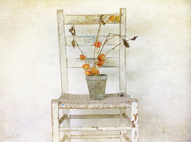 Pamela Schmieder DRIED FLOWERS IN POT ON WOODEN CHAIR Flowers