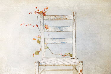 Pamela Schmieder RED BERRIES ON WHITE CHAIR Flowers