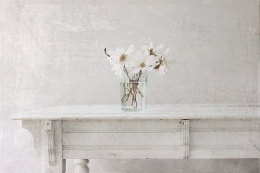 Pamela Schmieder WHITE FLOWERS ON WOODEN TABLE Miscellaneous Objects