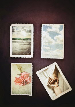 Lyn Randle POSTCARDS OF SEA, CLOUDS, ROSES AND TWO HANDS Miscellaneous Objects