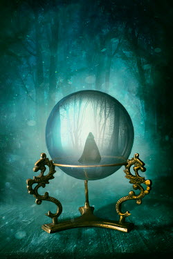Sandra Cunningham CLOAKED FIGURE AND FOREST INSIDE CRYSTAL BALL Women