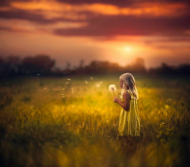 Jake Olson LITTLE GIRL BLOWING DANDELION FLOWER Children