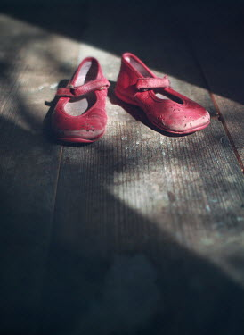 Mark Owen LITTLE GIRLS RED SHOES ON SHADOWY WOOD Miscellaneous Objects