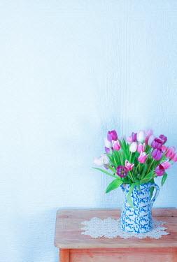 Jean Ladzinski TULIPS IN JUG ON TABLE Flowers