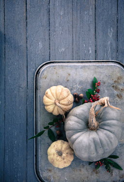 Jean Ladzinski PUMPKINS AND BERRIES ON WOODEN TABLE Miscellaneous Objects