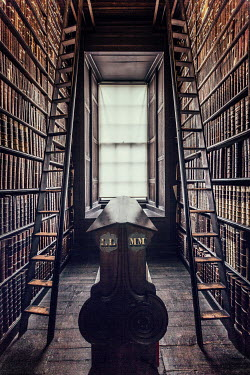Evelina Kremsdorf bookshelves and ladders in shadowy library Interiors/Rooms