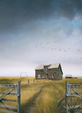 Sandra Cunningham wooden farm house in prairie field Houses