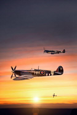 Lee Avison three 1940s supermarine spitfire airplanes in flight Miscellaneous Transport