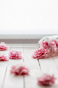 Paolo Martinez PINK FLOWERS IN KNOCKED OVER JAR Flowers