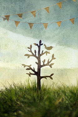 Kelly Sillaste PAPER CUT OUT OF TREE IN FIELD Miscellaneous Objects