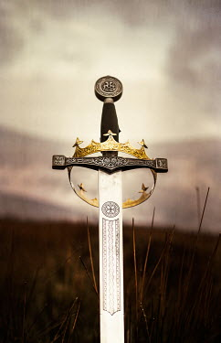 Magdalena Russocka MEDIEVAL SWORD AND CROWN IN COUNTRYSIDE Miscellaneous Objects