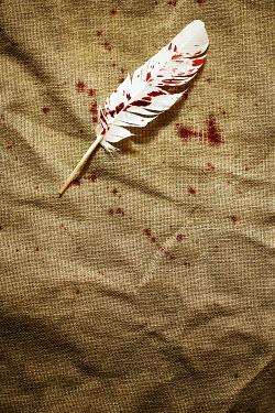 CollaborationJS white feather splattered with blood Miscellaneous Objects