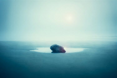 Logan Zillmer ROCK IN PUDDLE ON MISTY BEACH Seascapes/Beaches