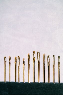 Jill Ferry ROW OF GOLD SEWING NEEDLES Miscellaneous Objects