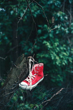 Maria Petkova RED TRAINER SHOE LEFT ON WIRE GARDEN FENCE Miscellaneous Objects