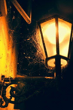 Ute Klaphake COBWEBS ON LAMP AT NIGHT Building Detail