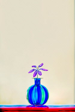 Franci van der Vyver PURPLE FLOWER IN BRIGHT BLUE VASE Flowers