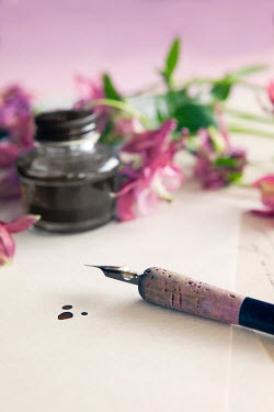 Isabelle Lafrance FOUNTAIN PEN, INK POT AND PINK FLOWERS Miscellaneous Objects