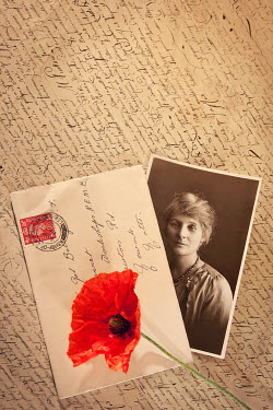 Emma Goulder OLD PHOTOGRAPH WITH LETTERS AND POPPY Miscellaneous Objects