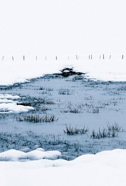 Ebru Sidar FROZEN SNOWY POND IN COUNTRYSIDE Snow/ Ice