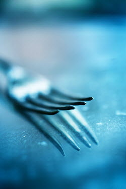 Jill Ferry FORK REFLECTED IN BLUE SURFACE Miscellaneous Objects