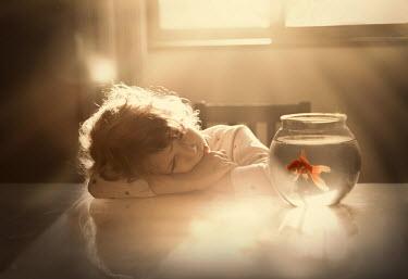 Sveta Butko LITTLE GIRL WITH GOLDFISH IN SUNLIT ROOM Children