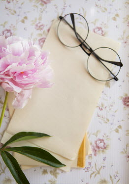 Isabelle Lafrance SPECTACLES, WRITING PAPER AND PINK FLOWER Miscellaneous Objects