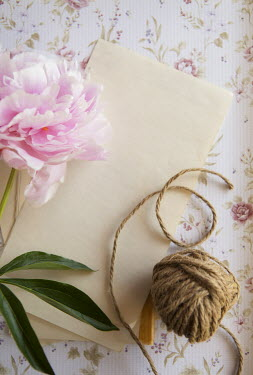 Isabelle Lafrance BALL OF STRING, WRITING PAPER AND PINK FLOWER Miscellaneous Objects