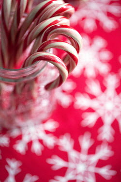 Jean Ladzinski CHRISTMAS CANDY CANE SWEETS IN GLASS JAR Miscellaneous Objects