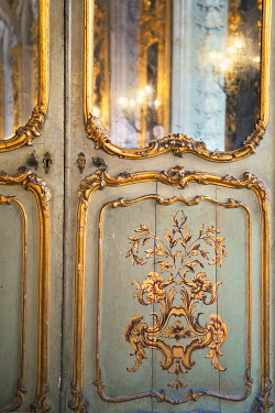 Irene Suchocki DECORATIVE GOLD PALACE DOORS Interiors/Rooms