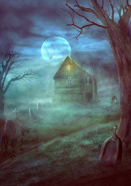Drunaa Cabin in misty graveyard Houses