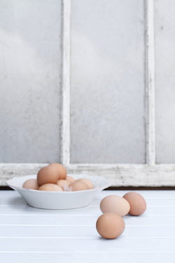 Stephanie Frey Fresh Farm eggs in front of an old window Miscellaneous Objects
