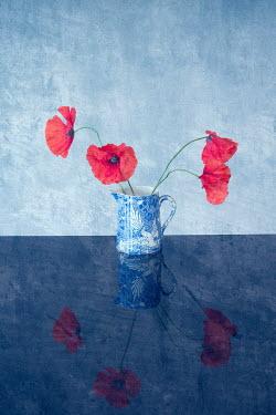 Liz Dalziel RED POPPIES IN BLUE JUG Flowers