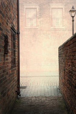 Lee Avison an alleyway entering a red brick cobbled road Streets/Alleys