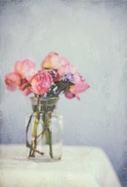 Jill Ferry PINK ROSE FLOWERS IN GLASS VASE Flowers