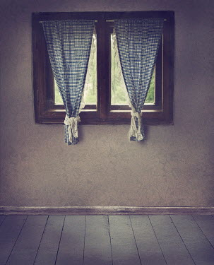 Drunaa Window with gingham curtains Interiors/Rooms