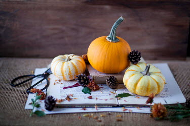 Jean Ladzinski PUMPKINS AND PINE CONES ON OPEN BOOK Miscellaneous Objects