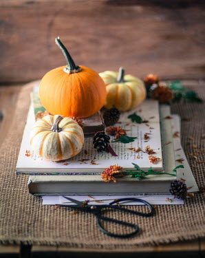 Jean Ladzinski PUMPKINS AND PINE CONES ON TOP OF BOOKS Miscellaneous Objects