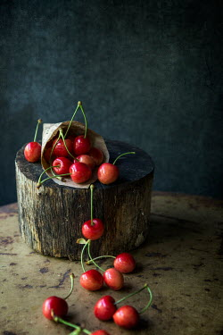 Galya Ivanova CHERRIES ON PIECE OF WOOD Miscellaneous Objects